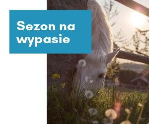 Sezon pastwiskowy – o jakich zasadach warto pamiętać?